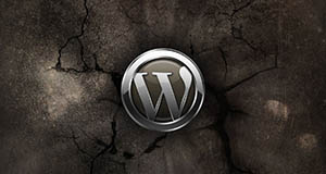 wordpress2015